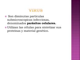 Clasificación de los virus - Colegio Adventista La Serena