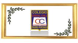 Cuenta publica 2015 - Colegio Cristal Chile