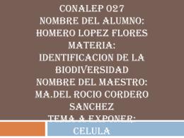 CONALEP 027 NOMBRE DEL ALUMNO: HOMERO LOPEZ
