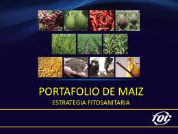 portafolio_ppt_maiz