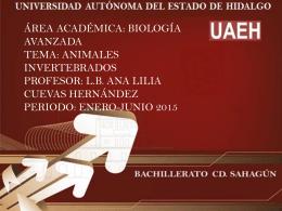 presentacion_ana_cuevas (Tamaño: 3.26M)