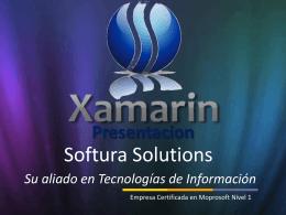 Desarrollo - Softura Solutions