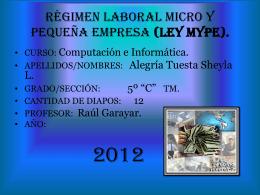Régimen laboral - Sheyla-23