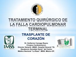 Dr. Guillermo Careaga Reyna