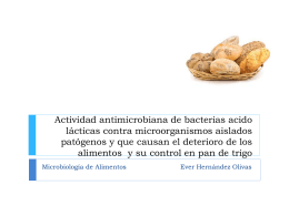 Actividad antimicrobiana de bacterias acido lácticas contra