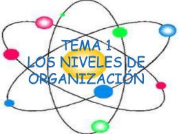 TEMA 1 LOS NIVELES DE ORGANIZACIÓN