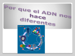 ¿Porque la estructura del ADN nos hace diferentes?