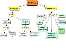 Biomas-Ecosistemas