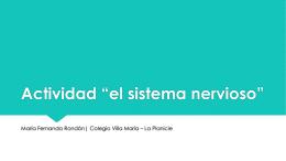 """SISTEMA NERVIOSO 2do """"D"""" - Colegio Villa María La Planicie"""