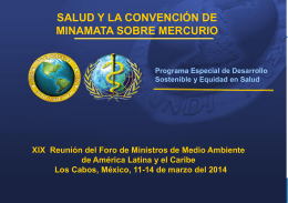 Minamata Convention and Health Mexico ESPANOL