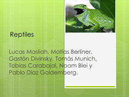 Reptiles - Campus Virtual ORT