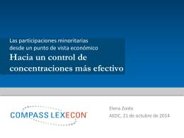 Participaciones minoritarias Vision Econmica External