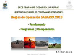 Reglas Sagarpa ocho 2013