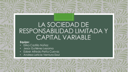 4.3 El capital y las partes sociales.