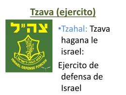 Tzava (ejército) - Hejalutz Lamerjav