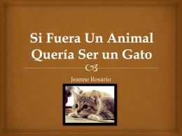 Si Fue Un Animal Quería Ser un Gato