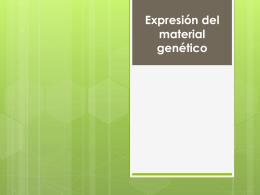 Presentación de PowerPoint - Colegio Adventista La Serena