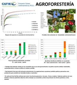 Descargue Poster de Agroforestería