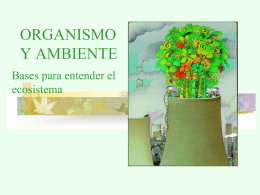 fotosintesis_sed_2015_1ro_medio