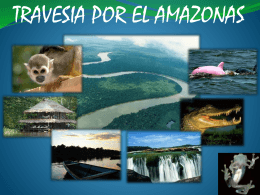 PROY. AMAZONAS - Mercadeo-UNITEC