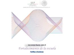 perfiles y funciones_agosto.docx-1 (2010520)