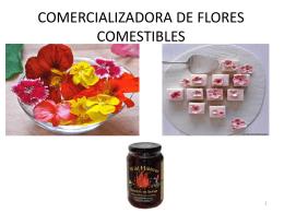 COMERCIALIZADORA_DE_FLORES_COMESTIBLES[1]