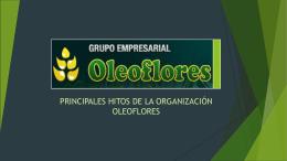 Proyecto Alineamiento Organizacional