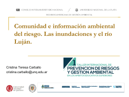 2014 7 Panel Prevención de Riesgos – Cristina Teresa Carballo