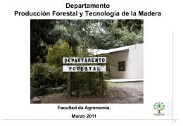 presentación del departamento de producción forestal y tecnología