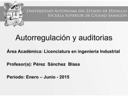 Autorregulacion_y_Auditorias (Tamaño: 1.16M)