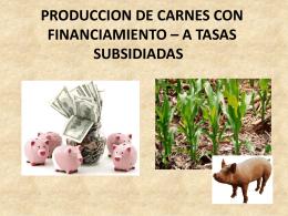 produccion de carne con financiamiento * a tasas