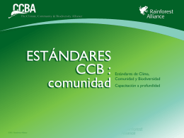 Errores comunes - Rainforest Alliance