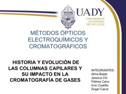 HISTORIA Y EVOLUCIÓN DE LAS COLUMNAS CAPILARES Y SU