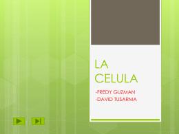LA CELULA - david alejandro