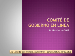 comité de gobierno en linea - Hospital Universitario Erasmo Meoz