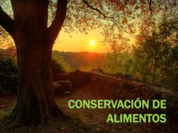 CONSERVACIÓN DE ALIMENTOS (6757062)
