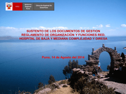 SUSTENTO-DE-DOCUMENTOS-DE-GESTION-ROF-2014