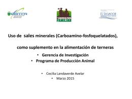 Uso de sales minerales (Carboamino