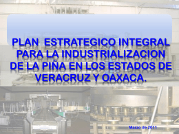 Plan Estrategico Integral para la Industrialización de la Piña en los