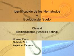 Nematología y Ecología de Suelos