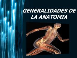clase 1 anatomia - Delegado Junior Udo Bolivar