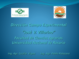 Presentacion Vigna