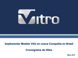 Implementar Modelo VAU en nueva Compañía en Brasil
