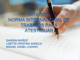 NITA 3000_Norma Internacional de trabajos para atestiguar