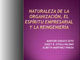 CLASE_4_Naturaleza_de_la_organizacixn