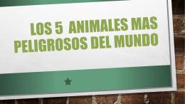 Los 5 animales mas peligrosos del mundo