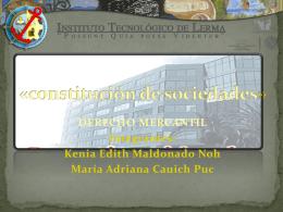 3.4 -EXPOSICION constitución-de