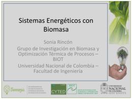 Seminario Internacional en Uso Energético Sostenible de Biomasa