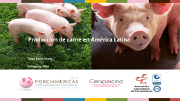 Diapositiva 1 - Asociación Colombiana de Porcicultores