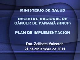 Plan de Implementacion del RNCP
